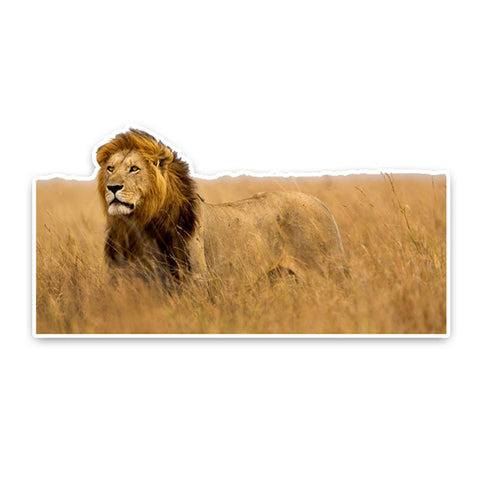 Sticker Lion Savane