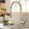 Kitchen Faucet with Pull Down Spout