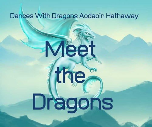 Meet the Dragons: Golden Dragons of Prosperity, January 20, 2020