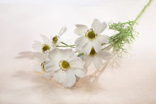 Load image into Gallery viewer, Stunning Artificial White Cosmos Daisy