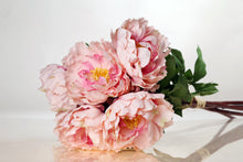 Load image into Gallery viewer, Stunning bunch of large pale pink peonies with buds