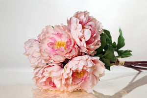 Stunning bunch of large pale pink peonies with buds