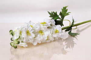 White silk double delphinium