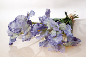 Stunning bunch of lilac irises