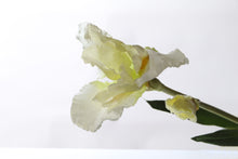 Load image into Gallery viewer, Delightful white silk iris