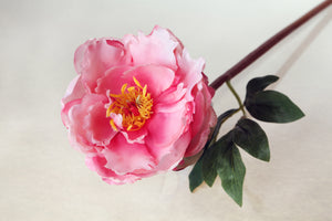 Pretty bright pink artificial single peony