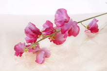 Load image into Gallery viewer, Pretty silk dark pink sweet peas