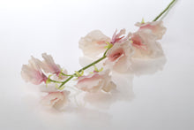 Load image into Gallery viewer, Pretty silk pale pink sweet peas