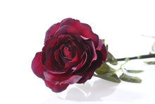 Load image into Gallery viewer, Beautiful dark red silk Hybrid Tea rose