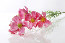 Load image into Gallery viewer, Beautiful Artificial Dark Pink Cosmos Daisy