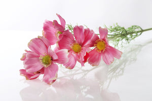 Beautiful Artificial Dark Pink Cosmos Daisy