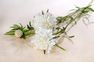 silk white scabious with two dainty flowers and a small
