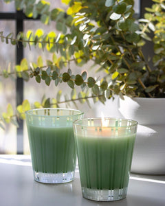 NEST New York Classic Candle - Wild Mint & Eucalyptus