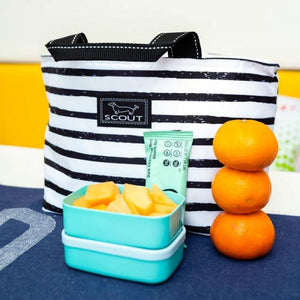 Scout Nooner Lunch Box