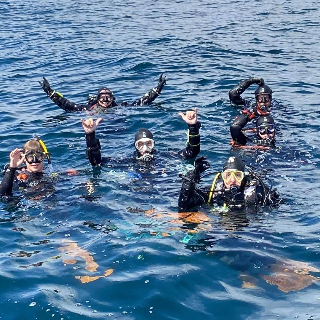 divers in water waving and having fun