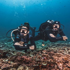 2 divers close to each other underwater