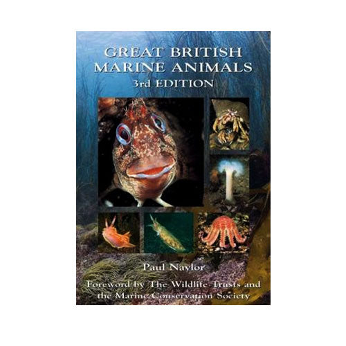 Great British Marine Animals | Photography & FishID Book