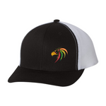 Embroidered Team Hat - Prospect Hawks
