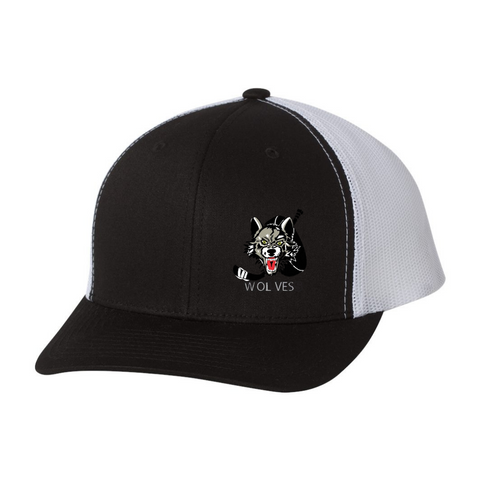 Embroidered Team Hat - Wolves