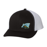 Embroidered Team Hat - Jaguars