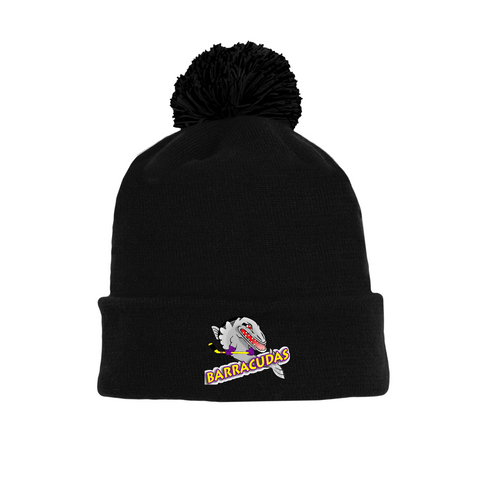 Tuque with Embroidered Logo - Barracudas