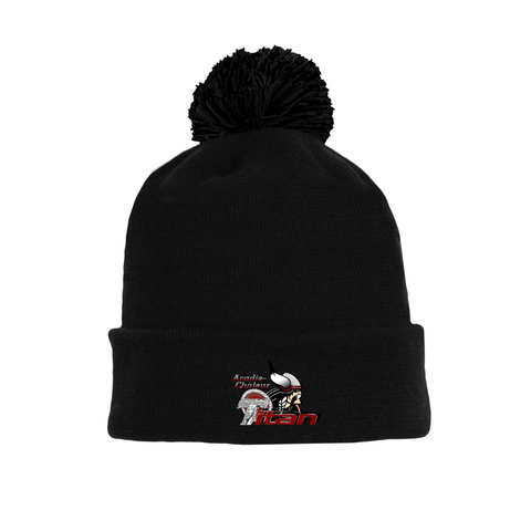 Tuque with Embroidered Logo - Titan