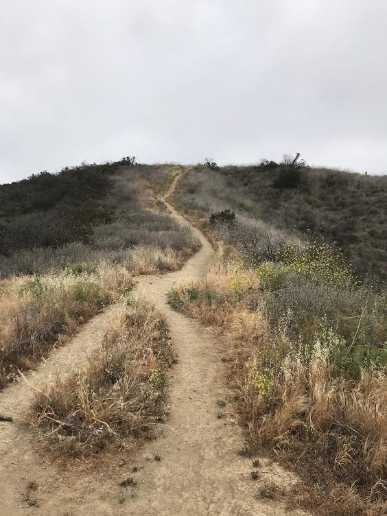 What keeps me up at night - Trail hike