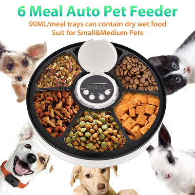 WOA Automatic Dog Feeder Timing