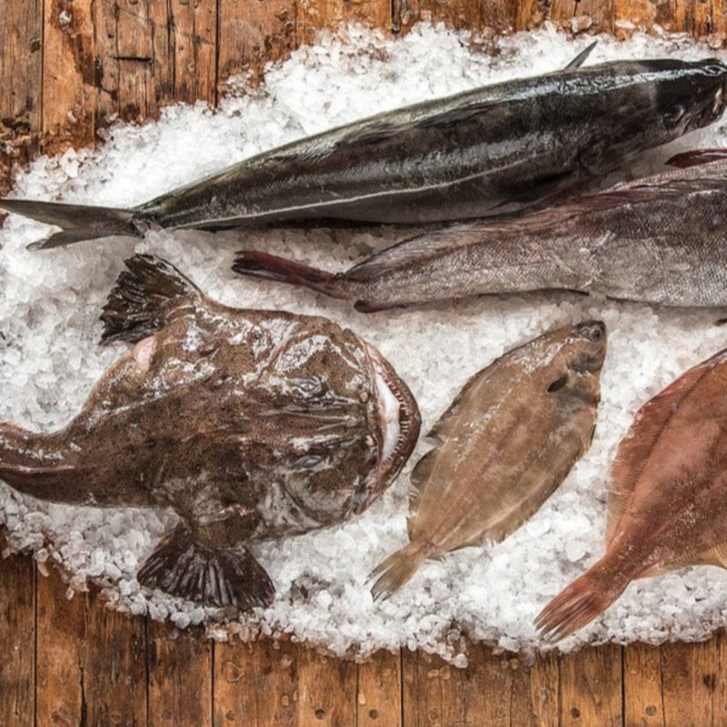 Ultimate Groundfish Package