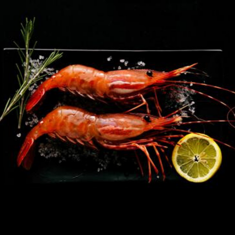 Chef Pack : Spot Prawns - Southern California