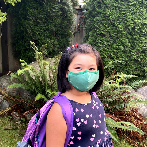 PM 2.5 filter for reusable branded 3-layer face mask in Canada and USA