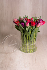 CRYSTAL BOX 25 TULIPANES
