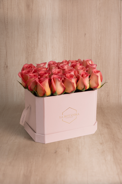 Love Box rosada 22 rosas Jemmy