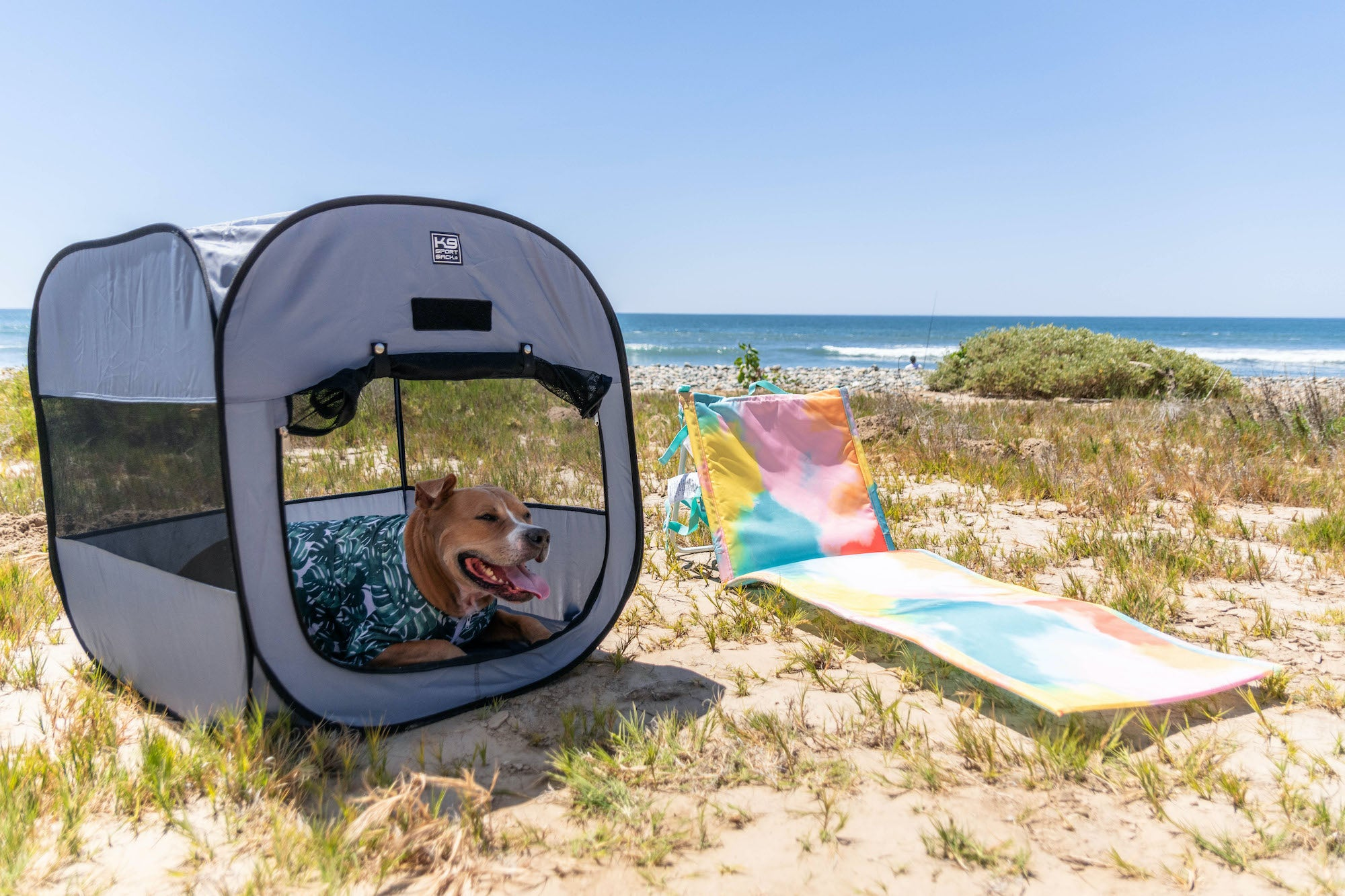 Dog in K9 Sport Sack Tent on the beach.