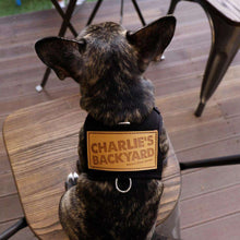 Load image into Gallery viewer, Charlie's Backyard Backpack Harness-Pink