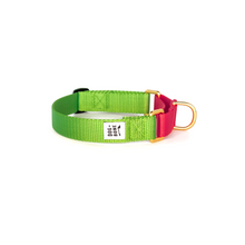 Load image into Gallery viewer, Dog + Bone Martingale Collar-Greenery & Punch