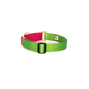 Dog + Bone Martingale Collar-Greenery & Punch