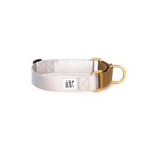 Load image into Gallery viewer, Dog + Bone Martingale Collar-Silver & Gold