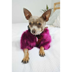 Eye of Dog Sweet Plum Faux Fur Ribbed Top