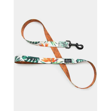 Leeds Dog Supply Tropicana Leash