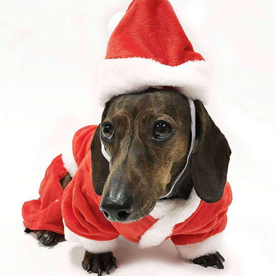 Midlee Designs Santa Pet Costume