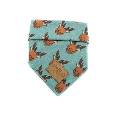 Pablo & Co. Mint Rudolph Bandana
