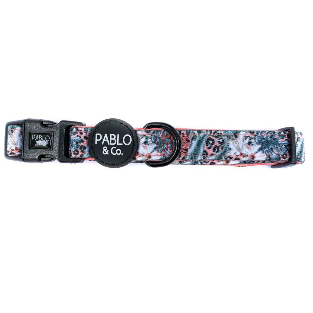 Pablo & Co. Palm Beach Collar