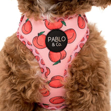 Load image into Gallery viewer, Pablo & Co. Peachy Adjustable Harness