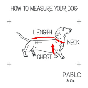 Pablo & Co. Peachy Adjustable Harness