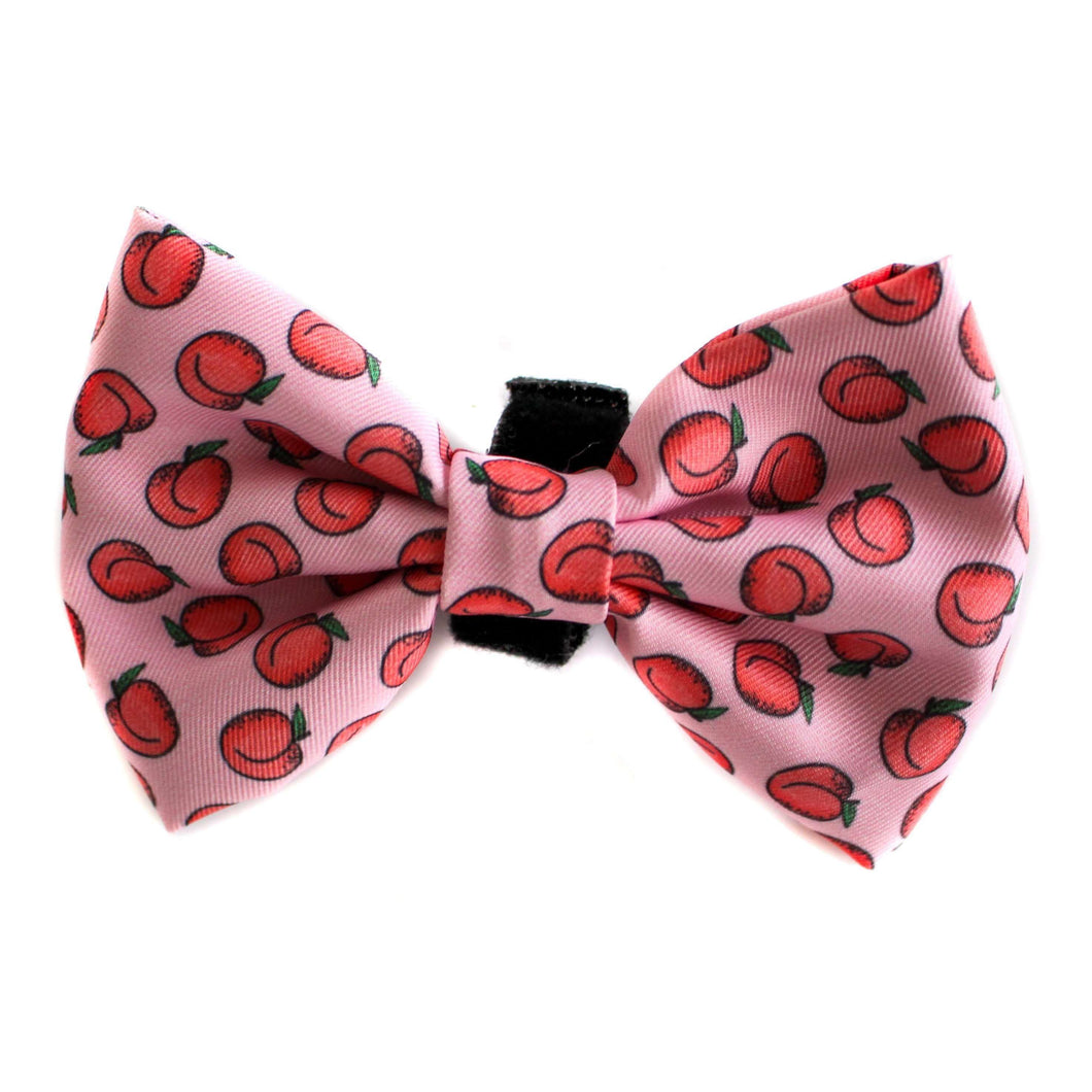 Pablo & Co. Peachy Bow Tie