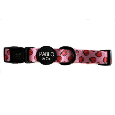 Pablo & Co. Peachy Collar
