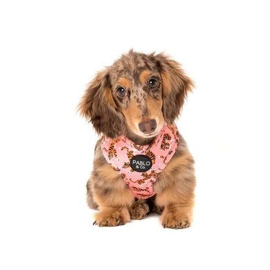 Pablo & Co. Pink Tigers Adjustable Harness