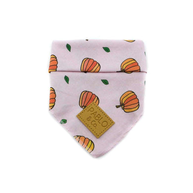 Pablo & Co. Pumpkin Pie Bandana