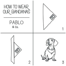 Load image into Gallery viewer, Pablo & Co. Sharks Bandana